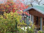 Woodville cottage