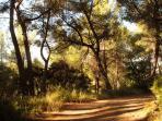 View round La Daby