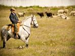 Traditional farming and a slower pace of life