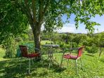 Relax under the mulberry tree and listen to the various birds on the property.