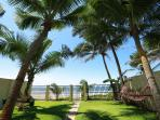 Relax among the palm trees