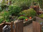 Our magical garden!
