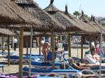 sunbeds to hire on beach