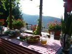 Breakfast,under vines on the rear terrace