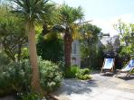 The front garden is south west facing and a real sun trap. It is private and secure.