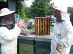 Francesco fa lezione di apicoltura