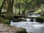 Golitha Falls, walks along the ancient woodlands by the river Fowey.  Near St. Neot.