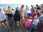 Crowd at regular turtle hatchling release.