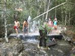Fuente de tronco