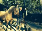 Habitants de la cabane.Babar, Romeo, Coloane et Bruno