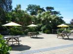 Enjoy a picnic in the sun.
