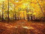 The joys of nature & seasonal views are breathtaking