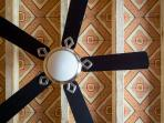Master Suite Fan with Painted Ceilings