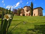 8 bedroom Villa in Castelnuovo Berardenga, Chianti, Tuscany, Italy : ref 2293959