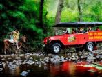 A 4 wheel drive, along the Sigatoka River valley, culminating in a Cannibal Cave is a must.
