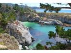 Visit Beautiful Point Lobos nearby!
