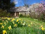 Relax in your own south facing rose garden with lime stone sun terrace