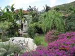 Gardens Behind the Pod