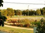 vista desde la ventana hacia las canchas de fútbol de la Universidad de la Frontera.