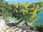 pathways towards our private beach