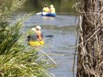 Hire a canoe and meander along the Yarra River in Warrandyte