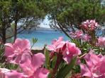 9 acres of beachfront property