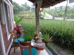 Front Terrace of KTS. Summit has great view of Rice Terrace