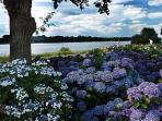 Lac au duc (20 min drive). Hortensia walk, picnic sites, creperie, water sports