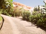 Driveway up to Piton Vista Villa