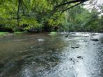 Ellijay River view