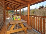 Cabin Side Deck/Picnic Table