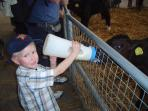 DAIRYLAND NEARBY ---    a great day out for families,  children can feed the animals