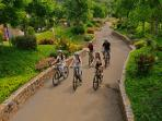 10 cycling routes