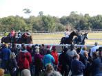 HITS 2015 horse racing