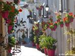 Typical street in old town Estepona