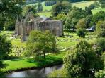 nearby Bolton Abbey estate
