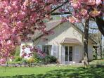 Charming cottage near Paris and Versailles
