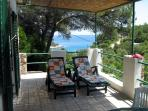view of the terrace with sun loungers