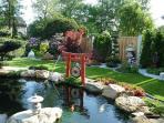 Unser im Japangarten integrierter Koi-Teich mit sehr großen Japan-Koi.