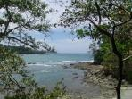 In Manuel Antonio National Park.