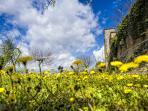 Secondo grande giardino della casa con mura del castello come perimetro