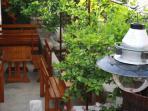 Restaurants on Solta