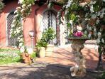 le piante nel giardino del bed & breakfast ai glicini castel gandolfo ai castelli romani ciampino
