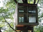 Bosques, casas en los árboles