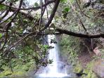 Waterfalls at Ricon de la Vieja - hidden waterfalls