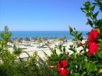 Falesia beach - 1,5 km