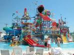 Aquashow - Waterpark