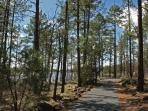 Enjoy an easy hike at Fool Hollow Lake. 1.5 miles from cabin.