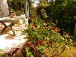 Jardin côté terrasse Ouest, déjeuner, goûter et dîner au soleil