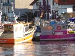 Les bâteaux de pêche de Capbreton qui ramènenet le poisson frais chaque jour à la criée du port